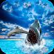Hungry Shark Attack Blue Whale Evolution Simulator