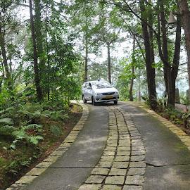 Curvy by Ashwini Attri - Transportation Roads