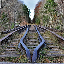 by John Geddes - Transportation Railway Tracks
