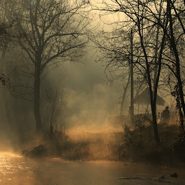 by Željka Gavrilović - Uncategorized All Uncategorized ( fog, forest, sunlight, landscape, river )