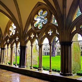 Cloisters ~ Salisbury Cathedral by Ingrid Anderson-Riley - Buildings & Architecture Places of Worship (  )