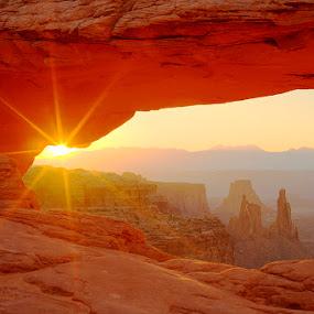 Mesa Arch by Tom Cuccio - Landscapes Deserts ( moab, desert, mesa, arch, utah, canyon, sunrise, landscape )