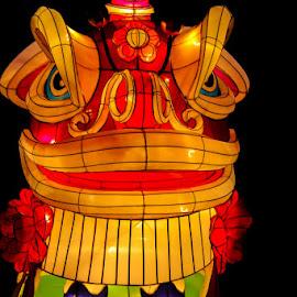 Lantern Dragon by Ruth Sano - Digital Art Animals ( red, dragon, night, light, photography, animal,  )
