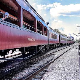 Taboo by Nancy Senchak - Transportation Trains