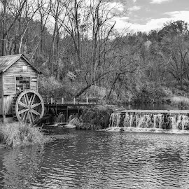 Dated Mill by Robert Coffey - Black & White Landscapes ( mill, stream, wheel, dam, trees )