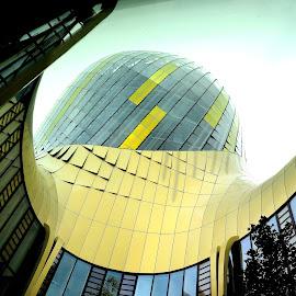Cité du Vin by Heather Aplin - Buildings & Architecture Other Exteriors (  )