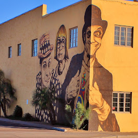 Early TV Icons by Jim Johnston - City,  Street & Park  Historic Districts