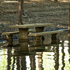 picnic table art by Kathy Suttles - Artistic Objects Furniture