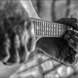 Mandolin Hands. by Susan Pretorius - People Body Parts