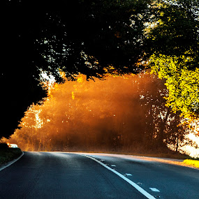 Forever And a Day by Sorin Bogdan - Landscapes Sunsets & Sunrises ( autumn, colors, road, surise, roadtrip )