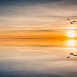 by Terje Jorgensen - Landscapes Sunsets & Sunrises