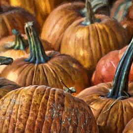 Punkin' Patch by Allen Crenshaw - Digital Art Things ( pumpkin., nature, digital art, art, design, photography )