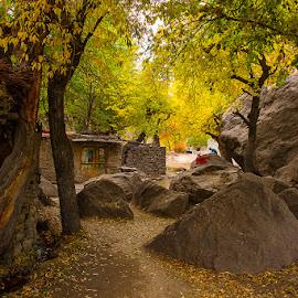Village in Mountains by Basharat Ali - Landscapes Mountains & Hills ( pakistan, houses, life, nature, village, autumn colors, landscape )