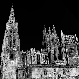 catedral Burgos by Roberto Gonzalo Romero - Buildings & Architecture Places of Worship ( black and white, burgos, cathedral, catedral )