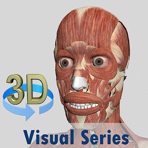 Visual Muscles 3D New App on Andriod - Use on PC
