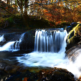 Campsie Water Fall by Wendy Milne - Nature Up Close Water ( water, campsie, scotland, nature, waterfall )