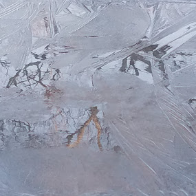 Icy Reflections by Linda Hogue - Nature Up Close Water