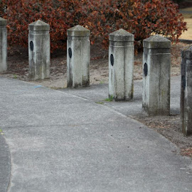by Richard Cox - City,  Street & Park  City Parks