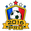 Euro 2016 Manager Pro