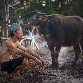 Old man with buffalo. by Visoot Uthairam - People Portraits of Men ( plant, countryside, laos, rake, tropical, thailand, thai, farmland, plantation, people, asian, farm, child, nature, farmer, lifestyle, asia, worker, cultivation, cambodia, china, water, work, buffalo, rice, paddy, green, seed, drag, agriculture, sapling, traditional, agricultural, farming, rural, livestock, human, country, field, labor, organic, food, cultivate, grow, grain, outdoor, natural, culture, growth )