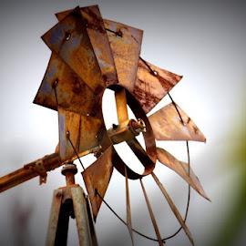 Rusty Windmill by Karen Coston - Artistic Objects Other Objects ( wind, maui, movement, rusty, hawaii, windmill,  )