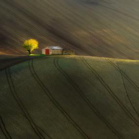 by Emanuele Zallocco - Landscapes Prairies, Meadows & Fields