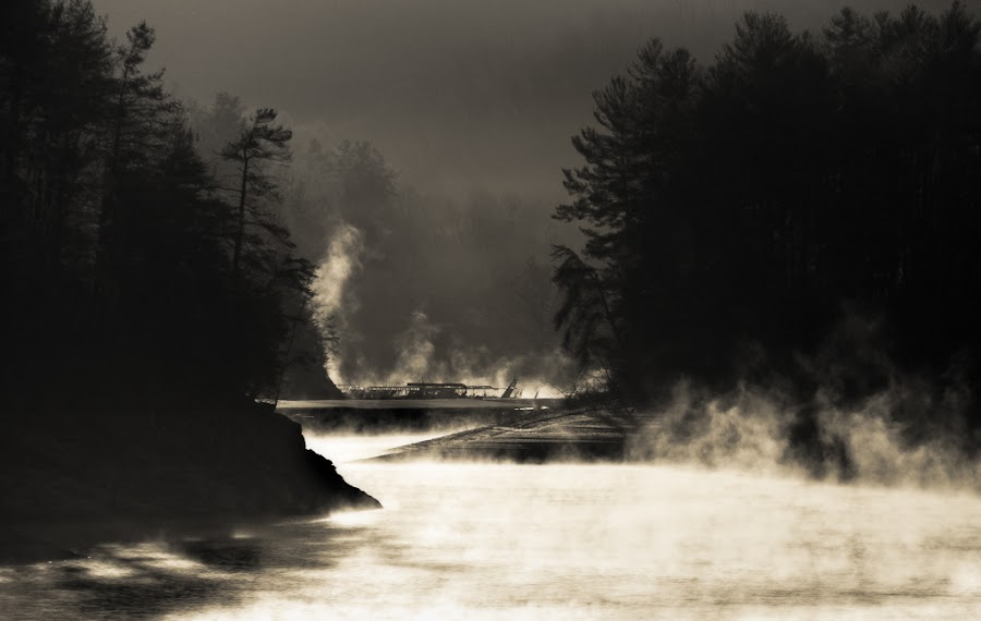 Rising Mist Just After Sunrise by Greg Booher - Landscapes Waterscapes ( 37620, sepia, frigid, rising mist, dark tones, silhouette, tennessee, atmosphere, south holston lake, freezing, usa, early morning, contrast, cold, greg booher, autumn, fall, moody, mist )