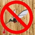 App mosquito killer 2017 prank APK for Windows Phone
