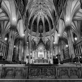 St. Patrick's Cathedral by Jim Hamel - Buildings & Architecture Places of Worship ( st. patrick's cathedral, church, black and white, cathedral, new york )