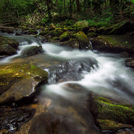 Anna Ruby Creek by Brennan Roche - Landscapes Waterscapes