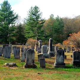 New England County Cemetry 1 by Martin Stepalavich - City,  Street & Park  Cemeteries