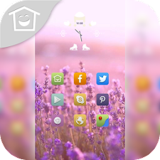 Beautiful pink flowers theme