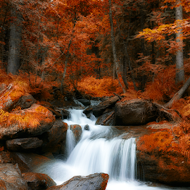 Rusty season by Alix Niculae - Landscapes Waterscapes ( water, orange, beautiful, waterfall, lake, forest, beauty in nature, rusty, beauty, leaves, autumn, cascade, rust, river )