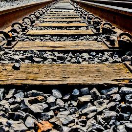 Low and Rocky by Barbara Brock - Transportation Railway Tracks ( train tracks, railroad tracks, low level of train tracks, perspective, empty tracks )