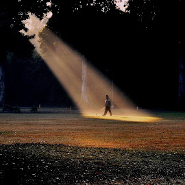 Morning Light by Ashwini Attri - Sports & Fitness Golf ( golfer, sport, golf, morning, sunlight )