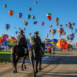 On duty at the Balloon Fiesta by Ruth Sano - Animals Horses ( balloon festival, horses, hotair balloons, travel, balloons, photography )