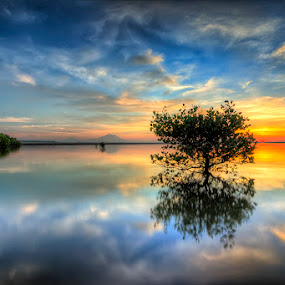 Reflections by Made Suwita - Landscapes Sunsets & Sunrises ( bali, reflection, beach, sunrise )