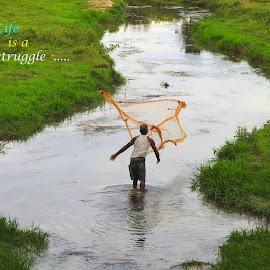 Fishing by SANGEETA MENA  - Typography Quotes & Sentences