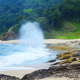 Water Blow by Rizki Puji - Landscapes Beaches ( water, nature, green, beach, nikon, blow, relax, tranquil, relaxing, tranquility )