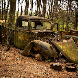 Final Resting Place by Dan Bartlett - Transportation Automobiles ( rust, georgia, green, truck, woods, forgotten, abandoned, trees,  )