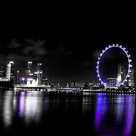 Purple illusion  by Ayrton Tay - City,  Street & Park  Night ( city scape, fairly wheel, buildings, night, city )