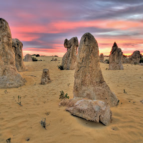 Desert Pinnacles by Steve Hatton - Landscapes Deserts ( desert, colourful sky, sunset, sunrise, landscape, pinnacles )