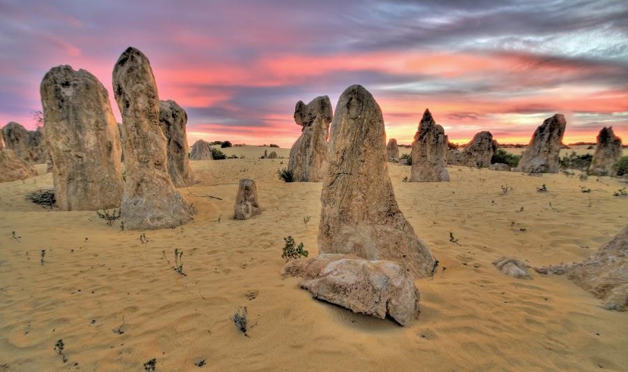 Desert Pinnacles by Steve Hatton - Landscapes Deserts ( desert, colourful sky, sunset, sunrise, landscape, pinnacles )