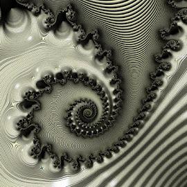 Silver Coil by Amanda Moore - Illustration Abstract & Patterns ( spirals, digital art, fractal art, spiral, fractal, digital, fractals )
