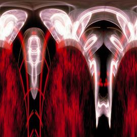 Shrimp by Nathan Stinson - Abstract Light Painting ( new art form, red, quantum, abstract art, transmitted light )