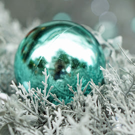 teal bubble by Alice Chia - Public Holidays Christmas ( bubble, tree, christmas, white, round, teal, fir, shiny )