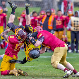 Monash Warriors vs South Eastern Predators by John Torcasio - Sports & Fitness American and Canadian football ( teamwork, outdoor, warriors, gridiron victoria, predators )