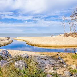 Fall Beach by Dave Lipchen - Landscapes Beaches ( fall beach )