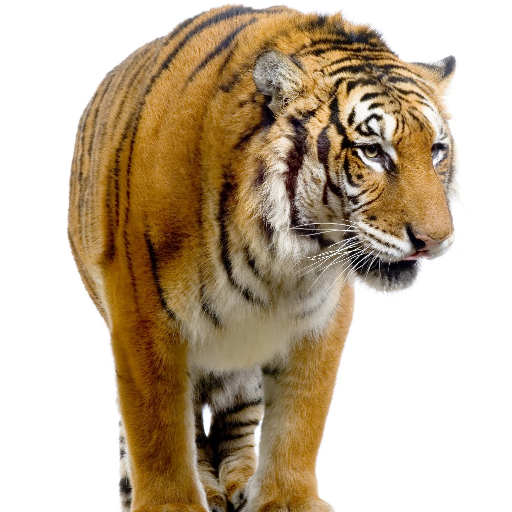 Tigers Themes (app)
