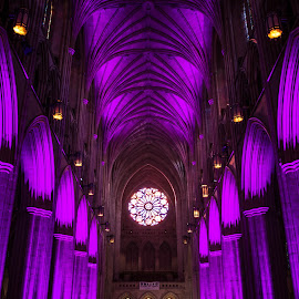 The Washington National Cathedral by Gary Hanson - Buildings & Architecture Places of Worship ( washington, interior, church, purple, rosary window, earthquake, pews, cathedral )